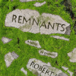 First review for The Remnants